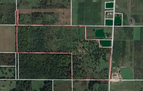 Beautiful piece of property on 39 acres in Coloma, Michigan