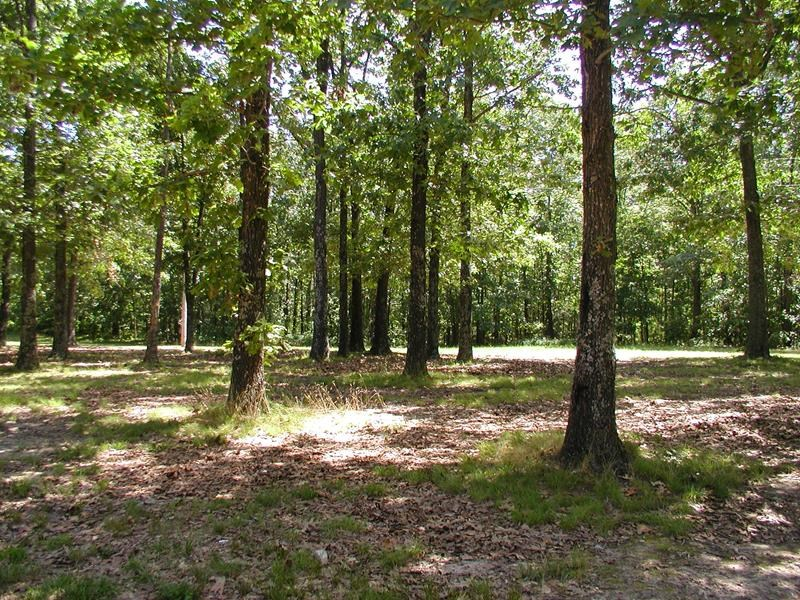 Missouri Ozarks acreage for sale in West Plains, Missouri