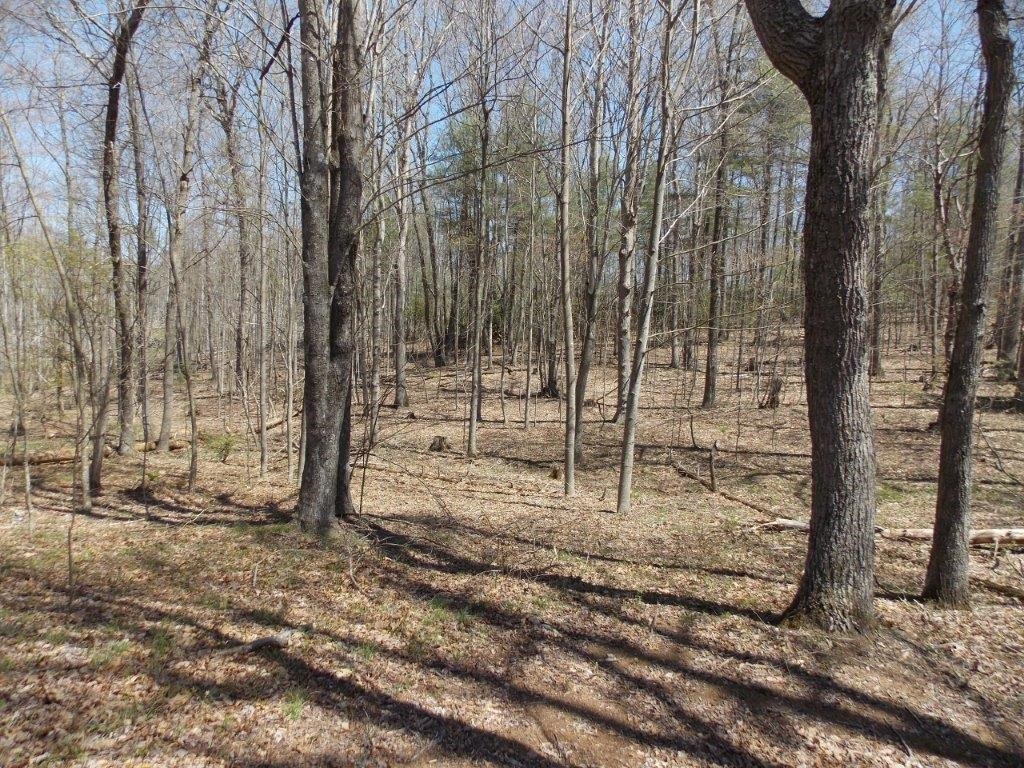 Hunting & Recreational Property for Sale in Floyd VA
