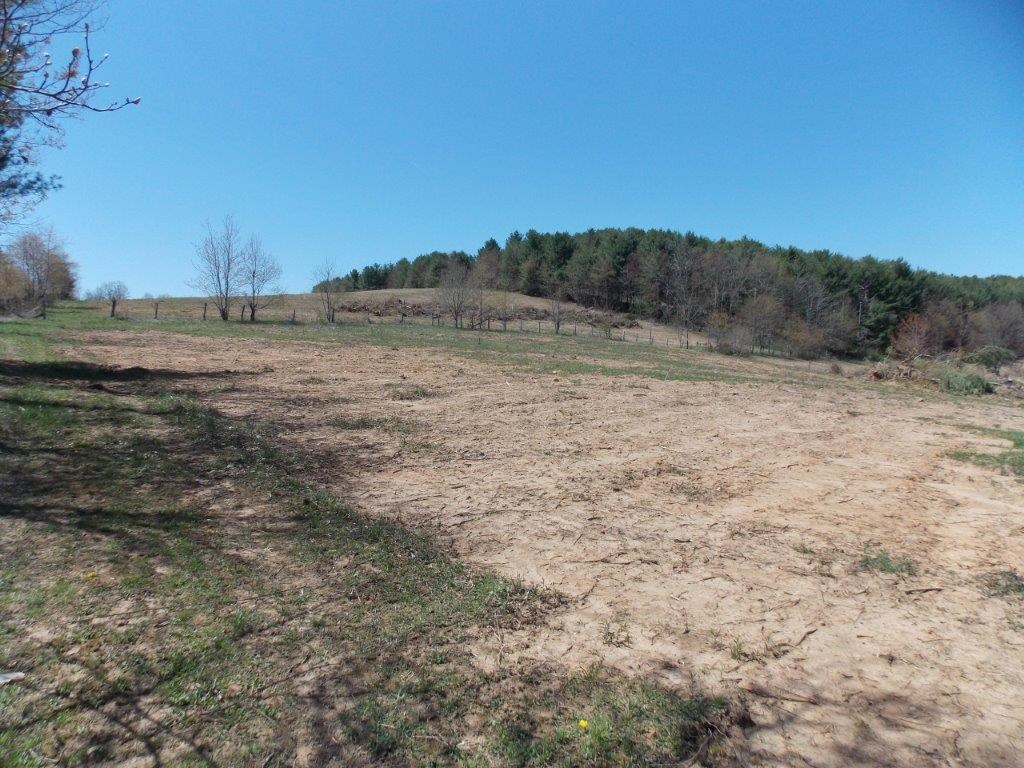 Recreation Land & Home Site in Floyd VA for Sale