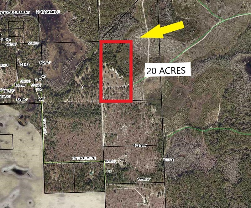 20 ACRES FOR SALE - BELL FLORIDA GILCHRIST COUNTY