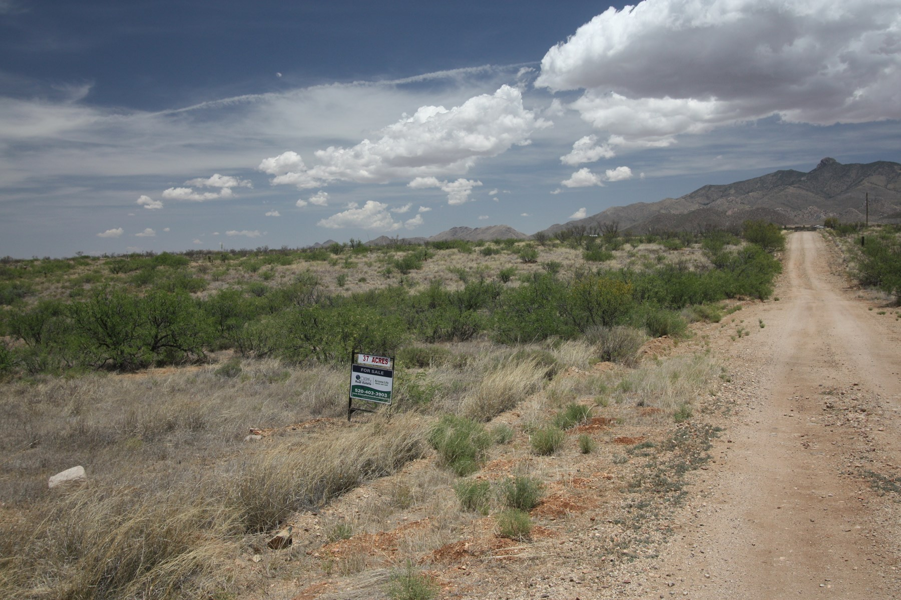 Vacant farm land near Willcox AZ in Cochise County