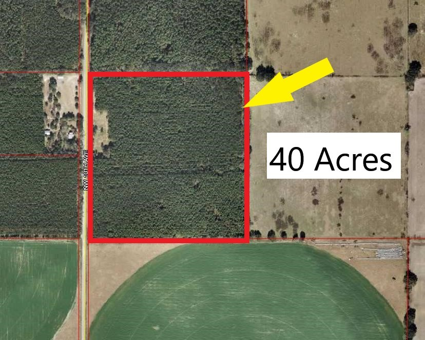 40 ACRES FOR SALE - CHIEFLAND, FLORIDA LEVY COUNTY