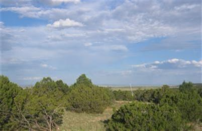 Mountain Homesite Moriarty New Mexico