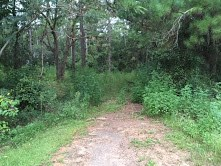 ONE ACRE HOMESITE IN PLANTATION COUNTRY