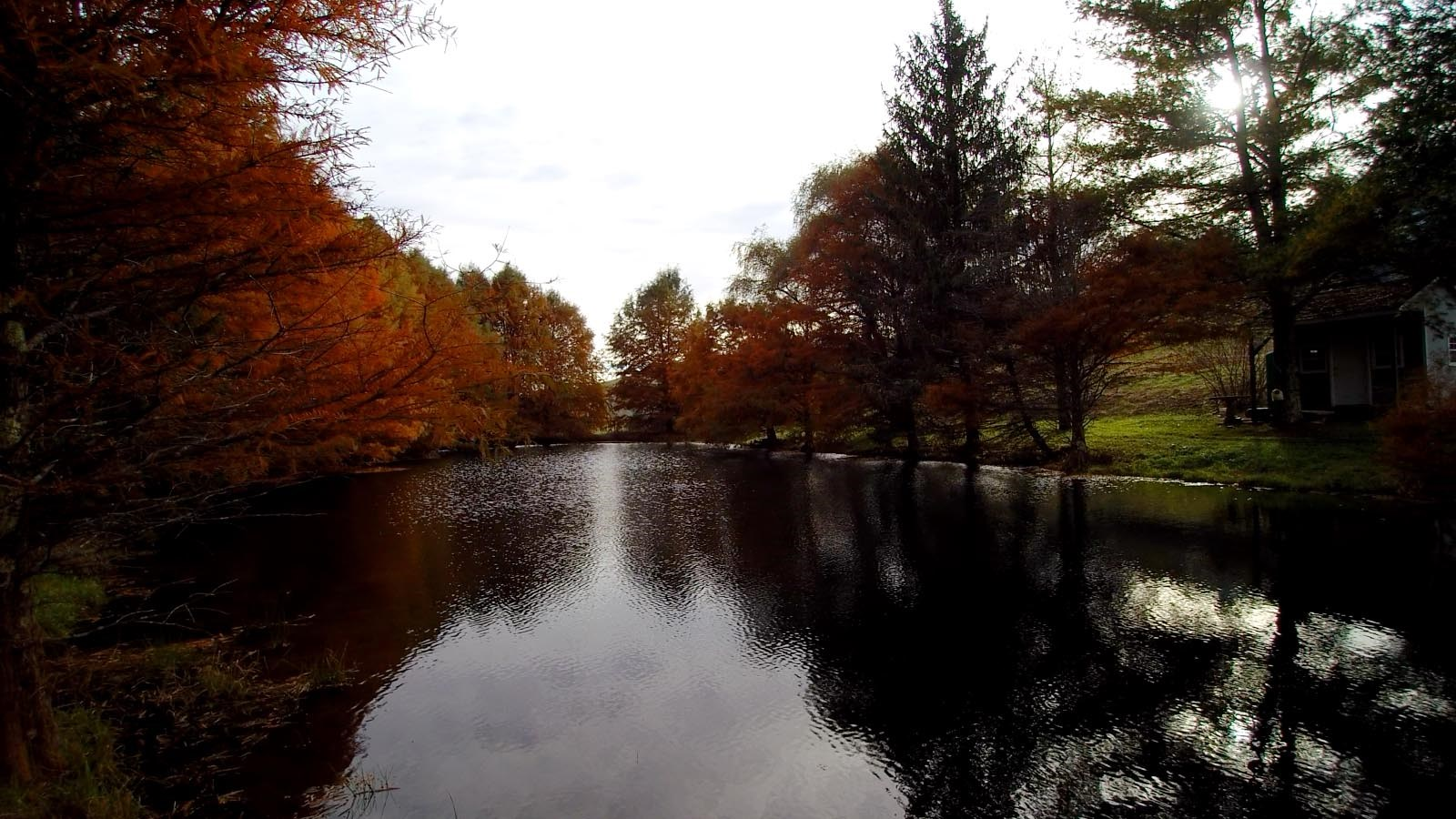 Blue Ridge Mountain Retreat with Pond!