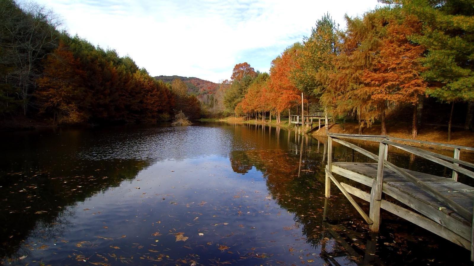 Blue Ridge Mountain Retreat with multiple Ponds!