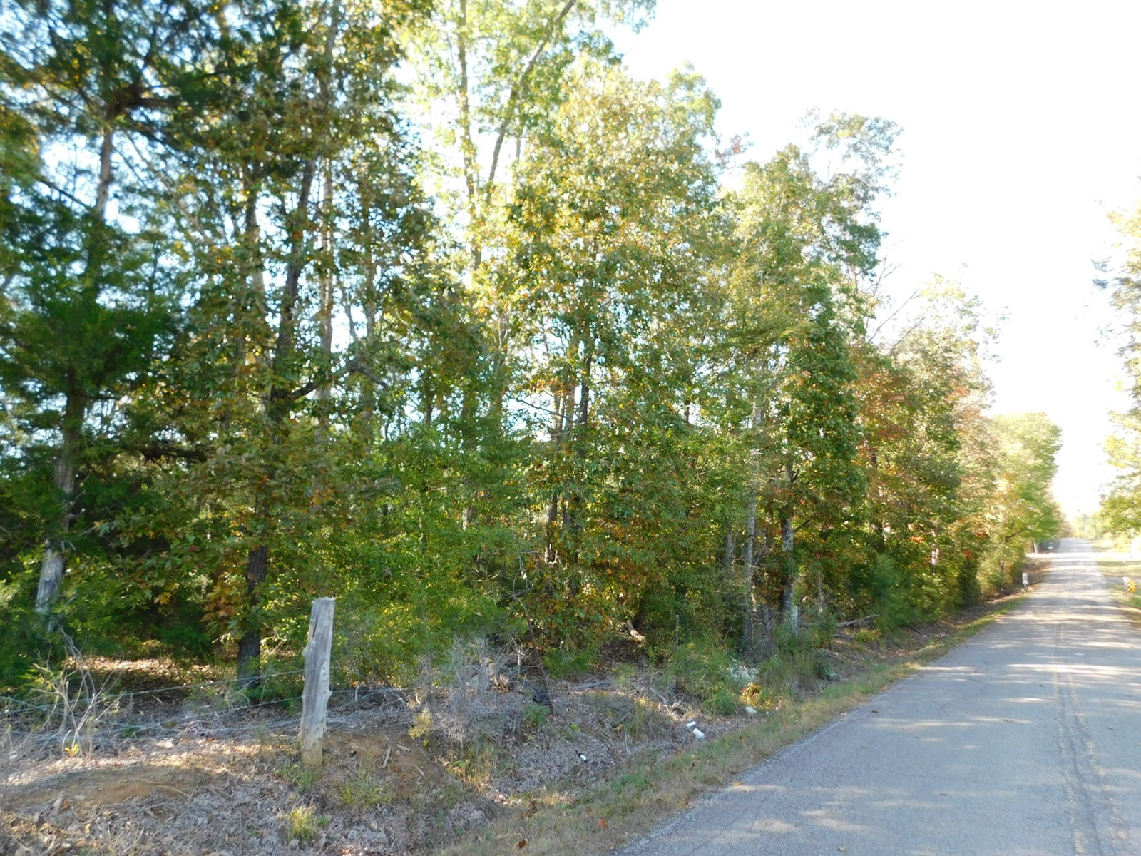 LAND FOR SALE IN TN NEAR SHILOH PARK AND GOLFING