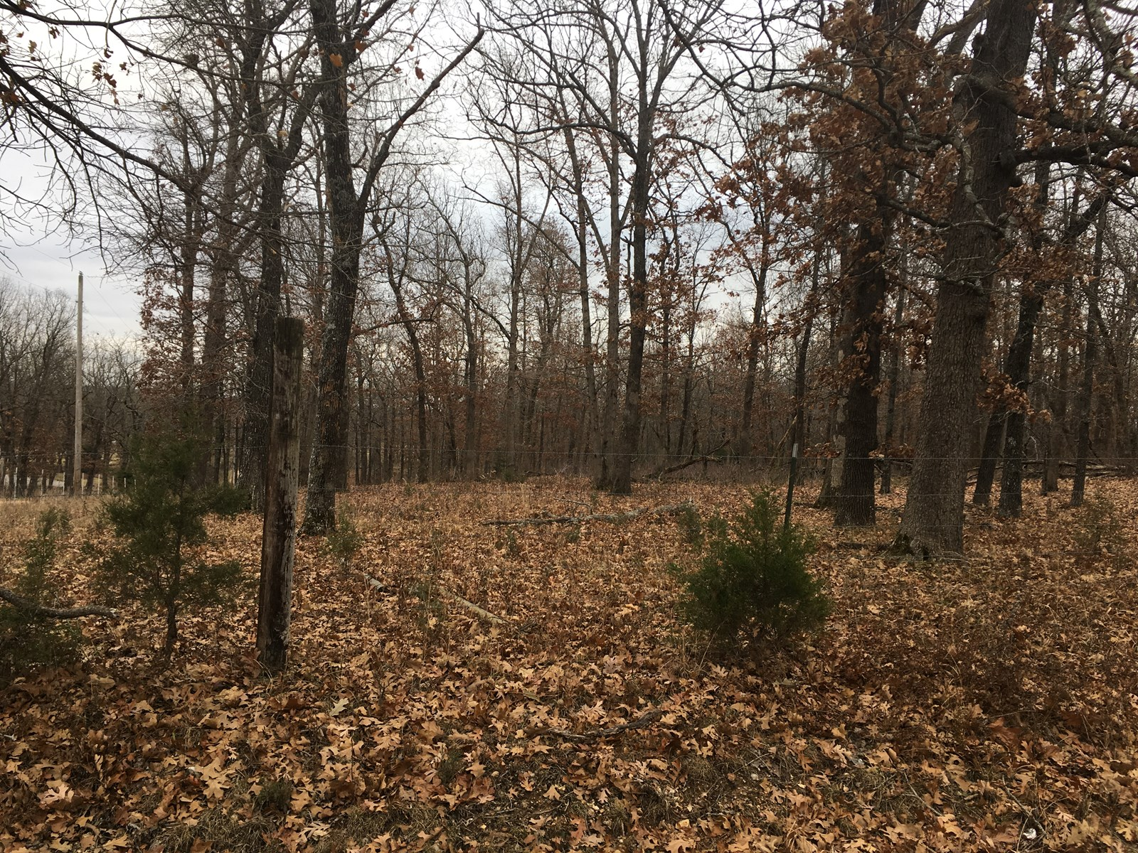 Land for Sale to Build your Home in Lebanon MO