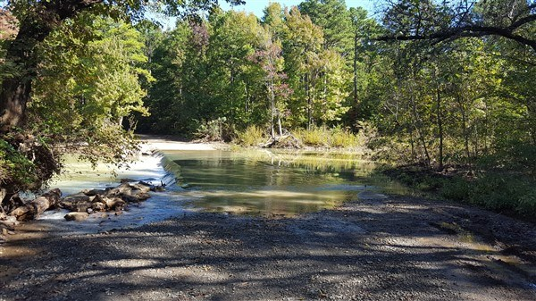 19 Acres on Blue Mountain Adjoining National Forest