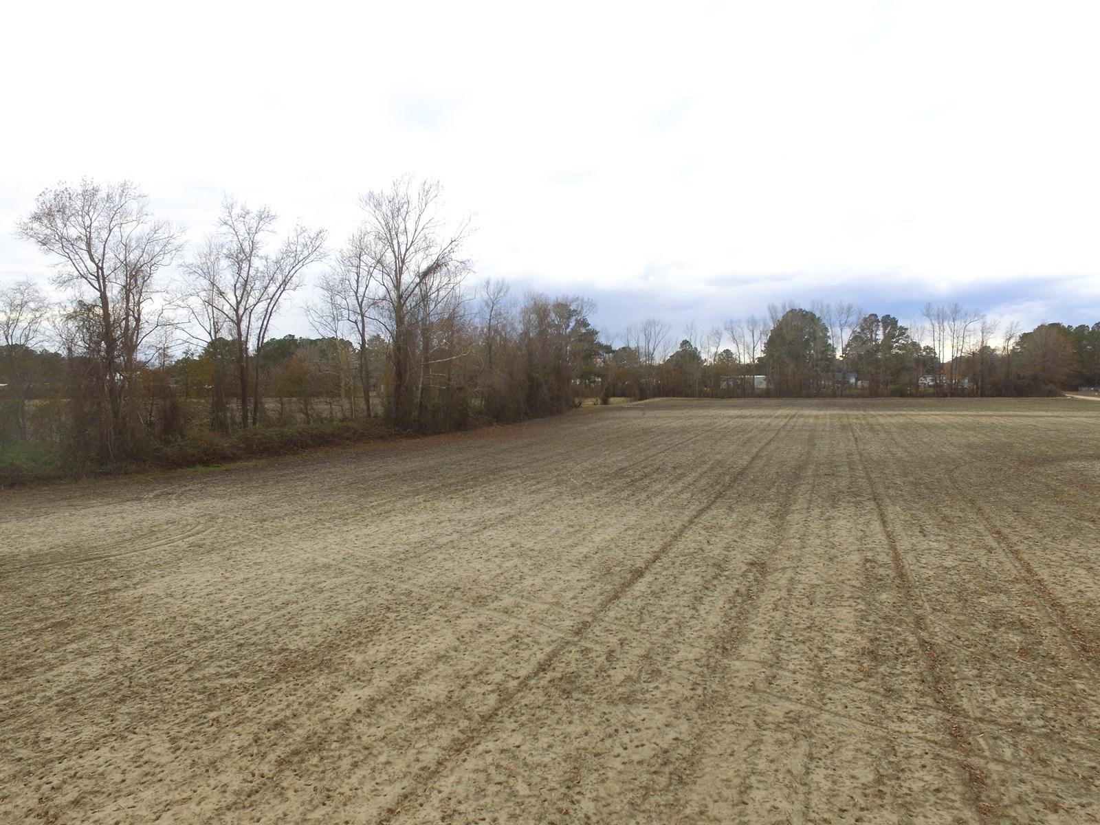 Hunting Property Pitt County NC/Farmland/Timberland