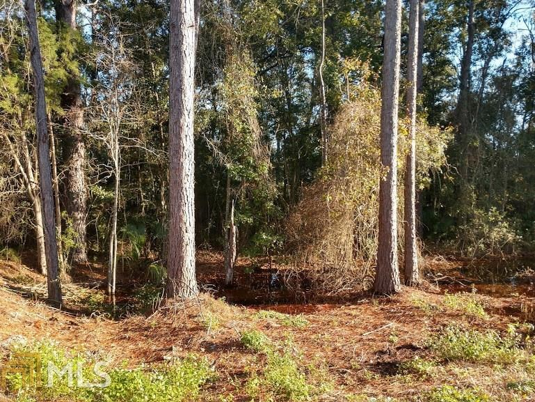 Desirable Land Lot in Brunswick, GA, Perfect for Building!