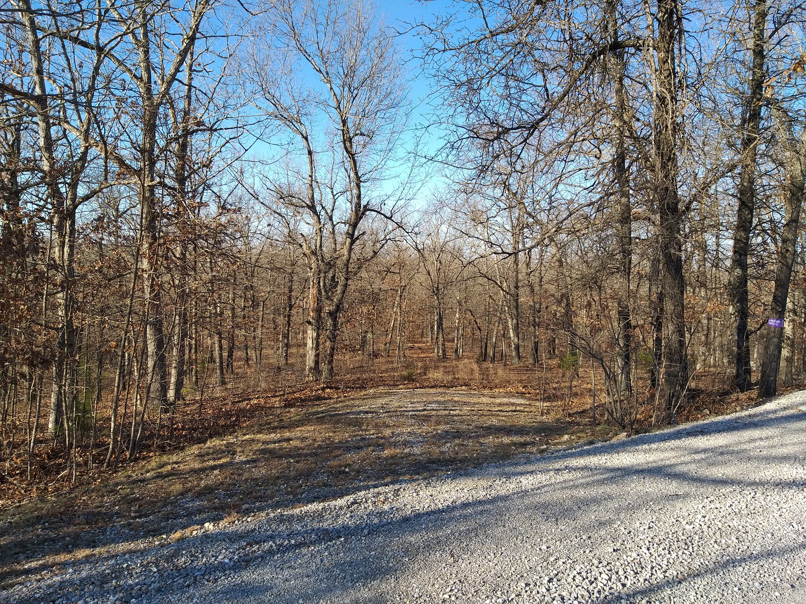 12.4 acres for sale in Missouri