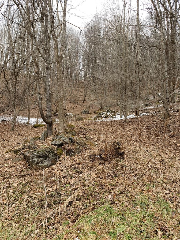 23.252 acres Joining Grayson Highlands Park
