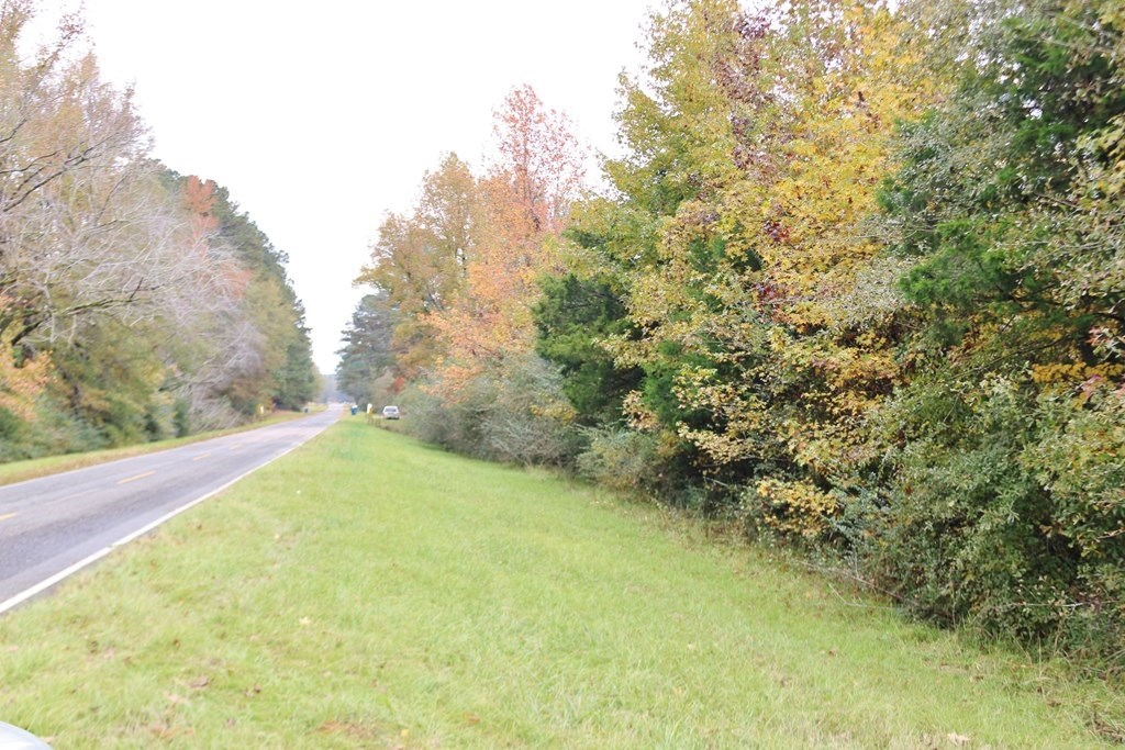 30.5 Acres Land for Sale Meridian, Lauderdale County, MS