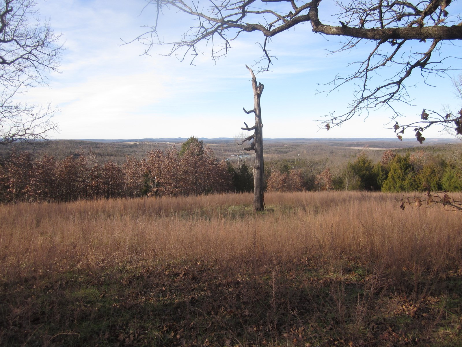LAND OVERLOOKING BULL SHOALS LAKE, READY TO BUILD, FOR SALE!