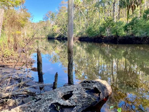 FLORIDA HUNTING LAND 182 ACRES LEVY COUNTY ON TWO RIVERS