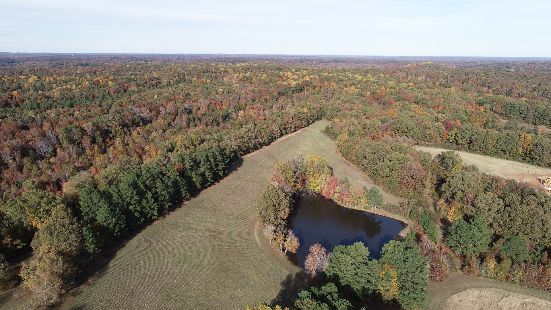 West Tn Farm for sale, Lake, Fruit, Cropland, Timberland