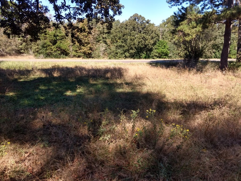 EAST TX LAND FOR SALE   SMALL ACREAGE   HIGHWAY FRONTAGE