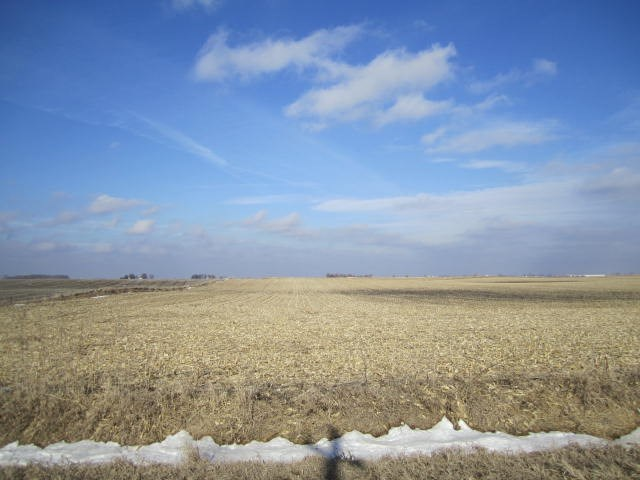Highly Tillable Farm Land Auction Hamilton County, Iowa