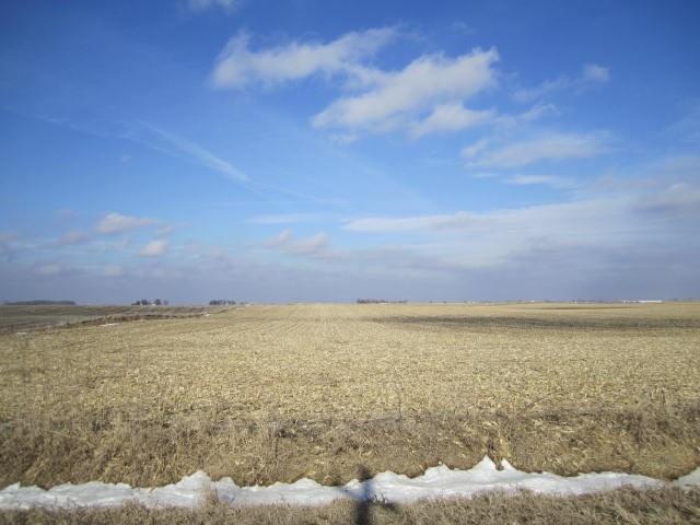 Highly Tillable Farm Land Auction Hamilton County IA