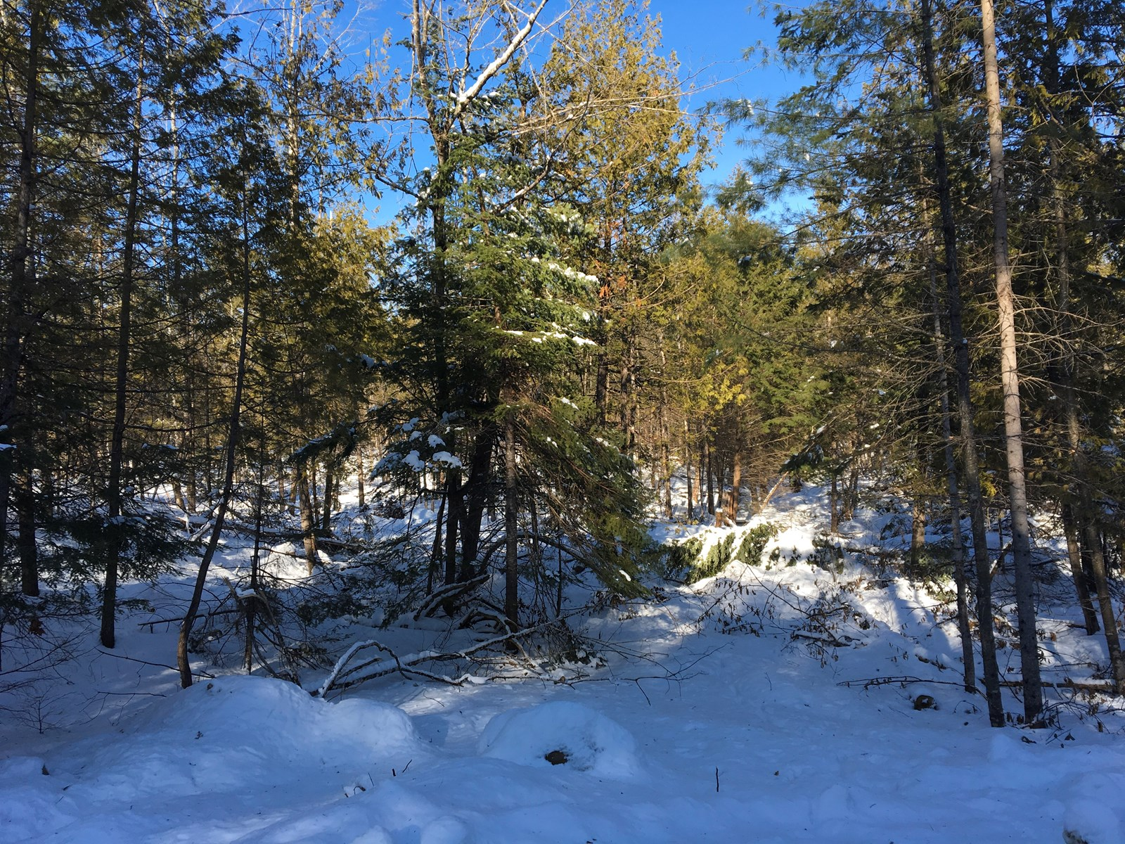 Owner Financed Land For Sale In Exeter, Maine
