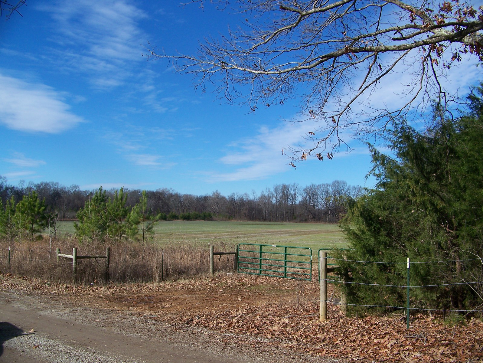 INDIAN CREEK LAND FOR SALE WITH CREEK ROW CROP LAND HUNTING