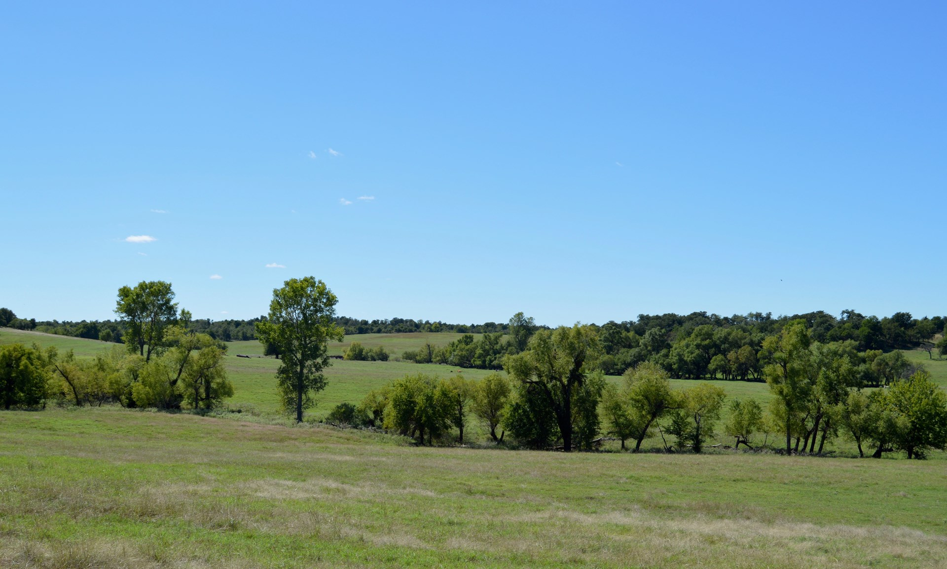 LAND FOR SALE GRADY COUNTY RUSH SPRINGS OKLAHOMA AUCTION
