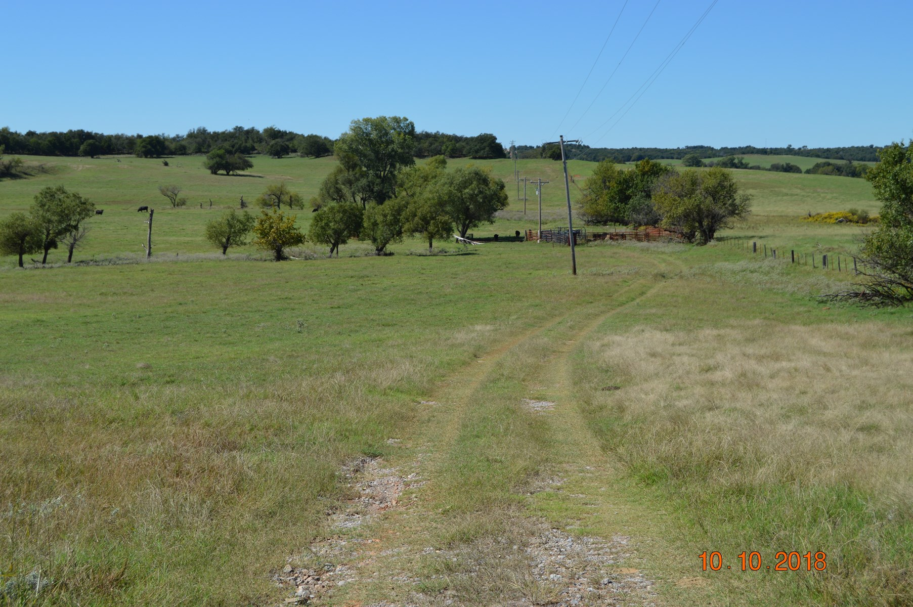 Grady County Bermuda Grass 149+- Acres Auction 1-29-2019