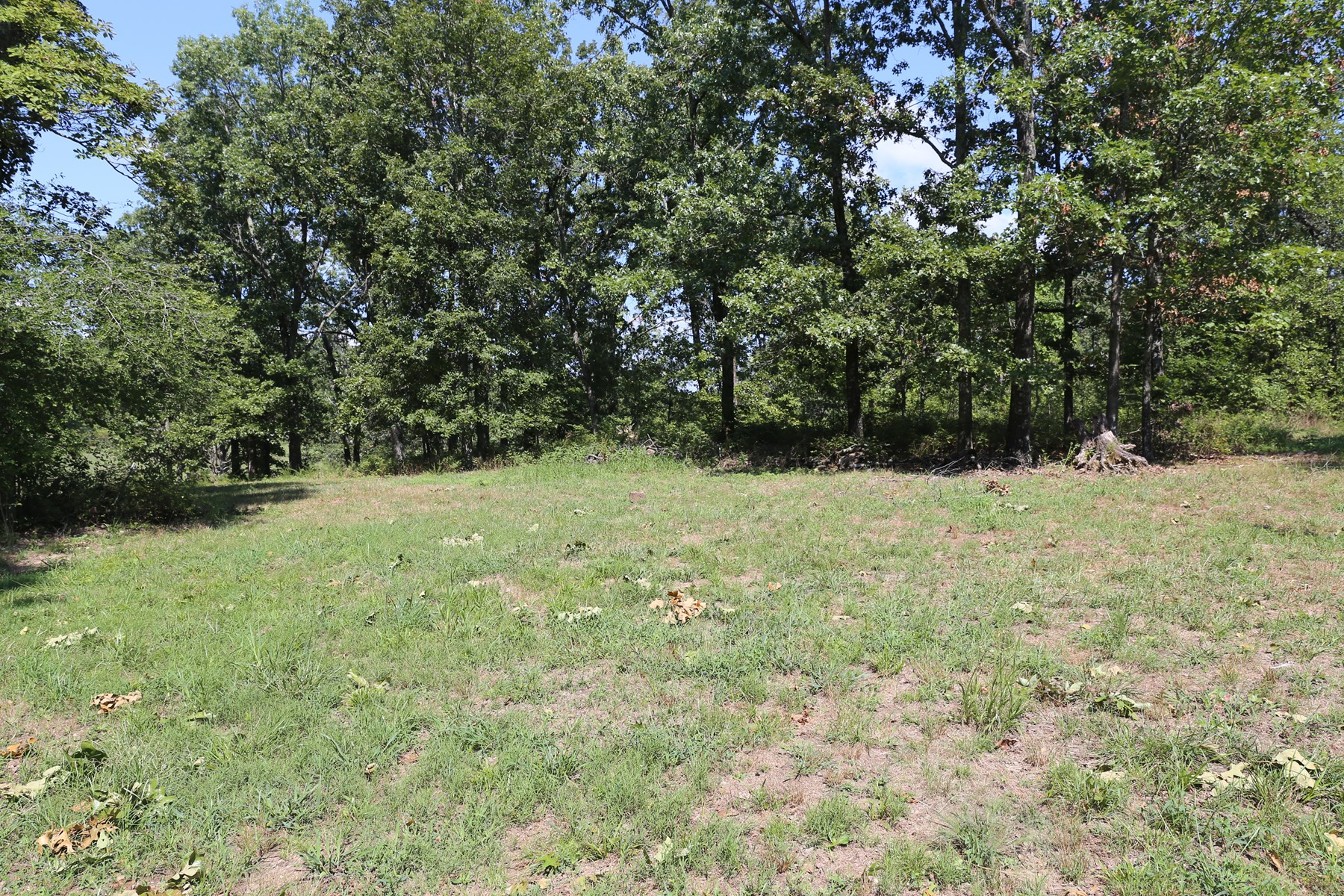 West Plains, Missouri Residential Lots for Sale - 4+ Acres