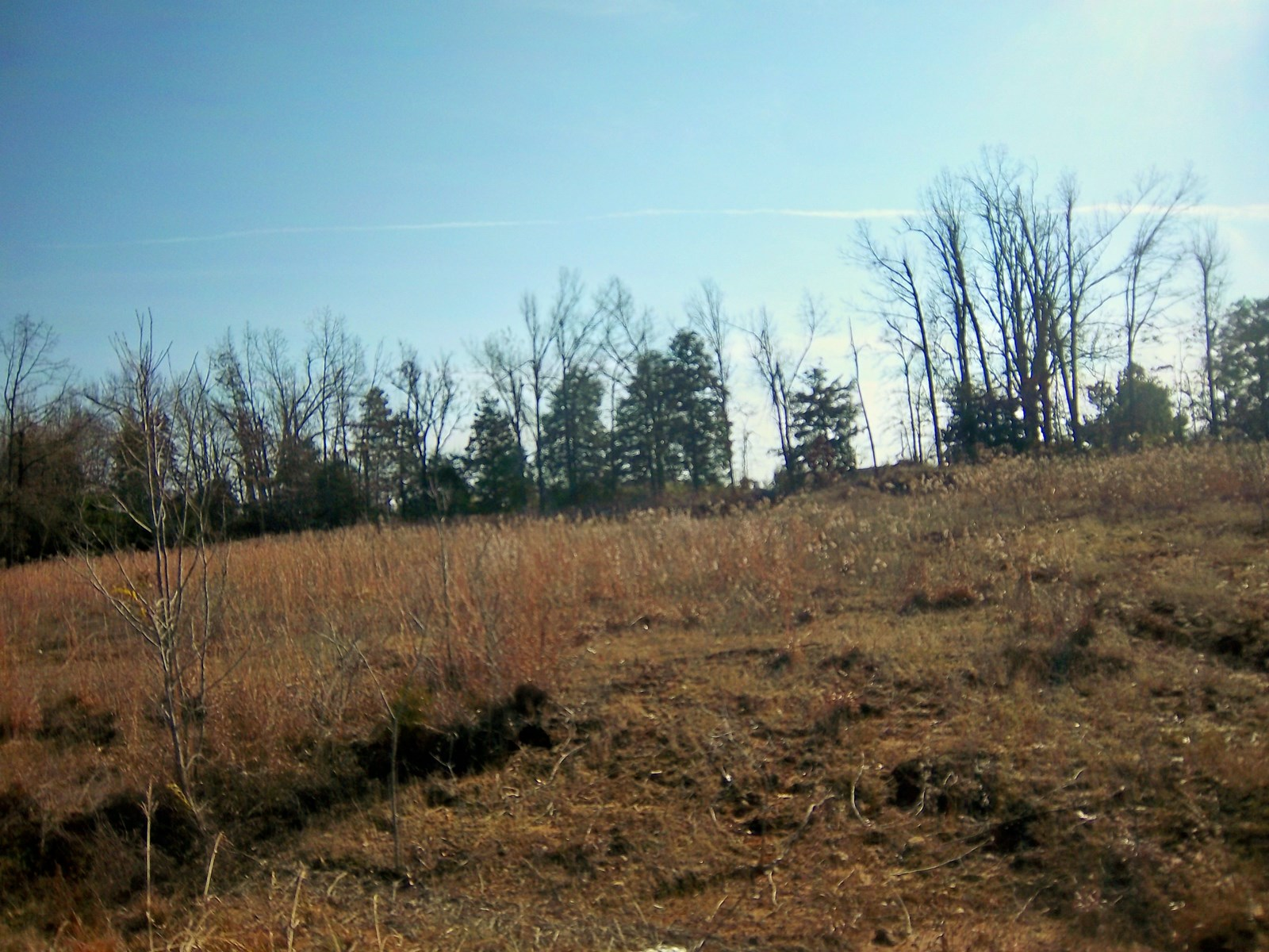 Commercial Lot For Sale in Pocahontas AR