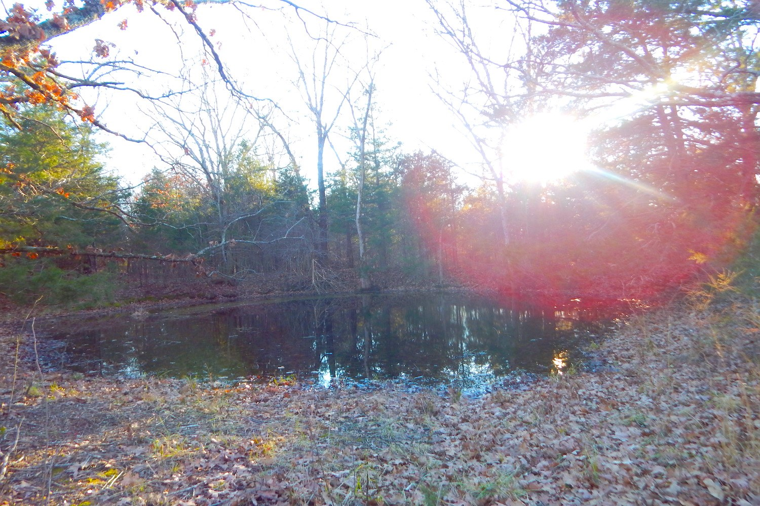 Land for Sale Close to Lake