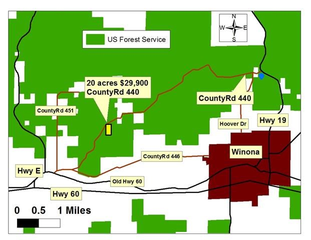 SOUTHERN MO LAND FOR SALE - HUNTING/RECREATION - 20 ACRES