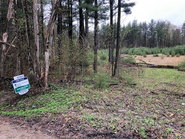 Wooded Land-Nice new home site!