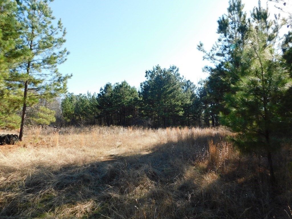 9.5 ACRES NEAR LAKE PALESTINE