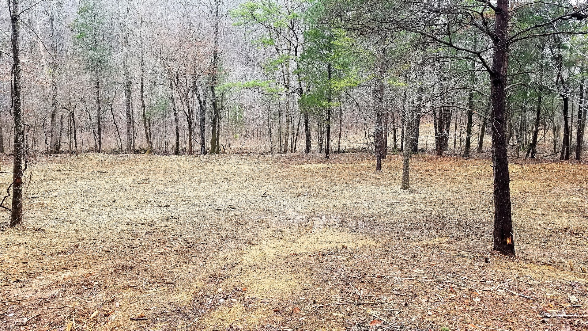 2.5 Acres Vacant Unrestricted Land w/Utilities Available