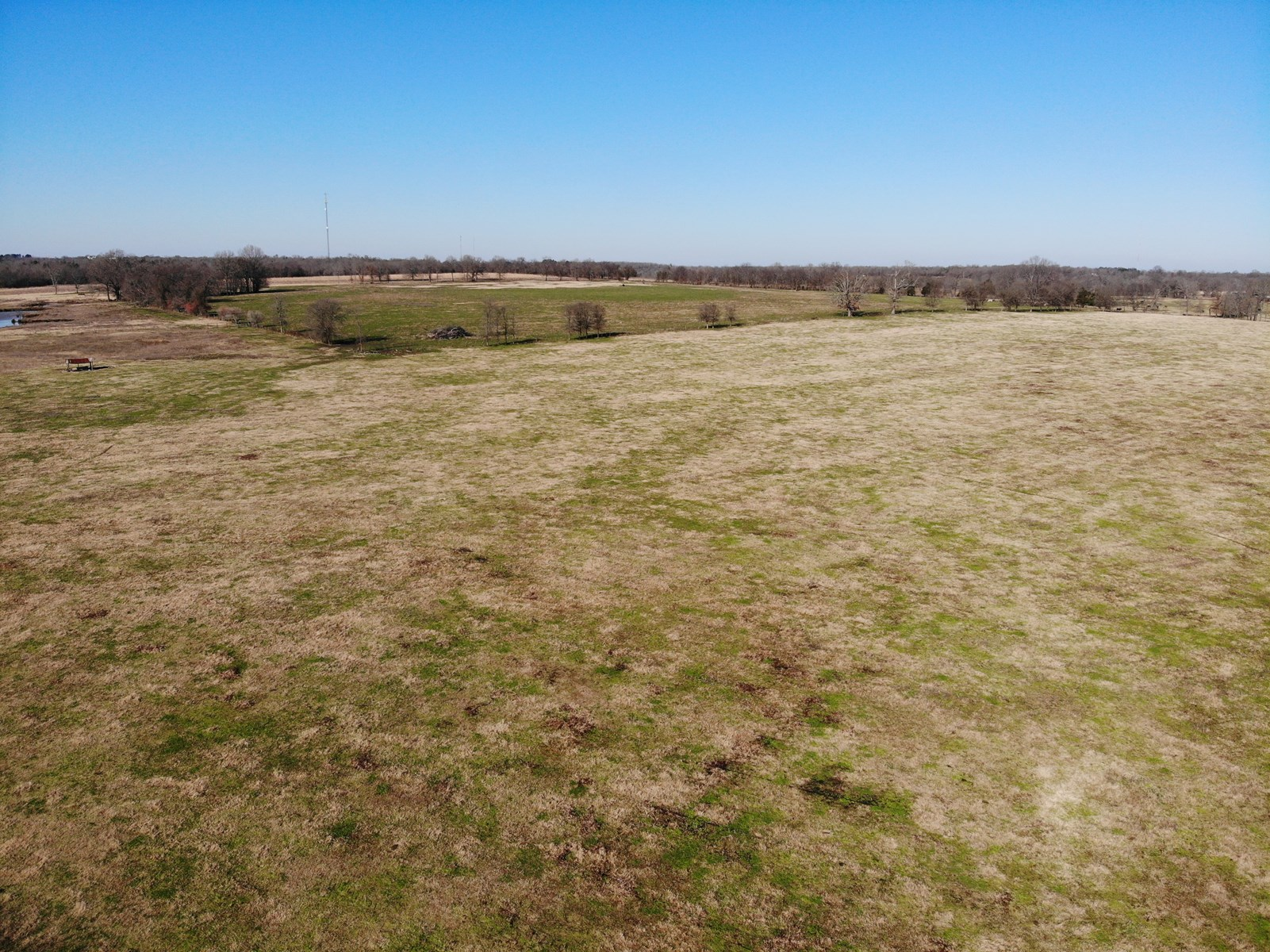Cattle Ranch For Sale In Idabel Oklahoma