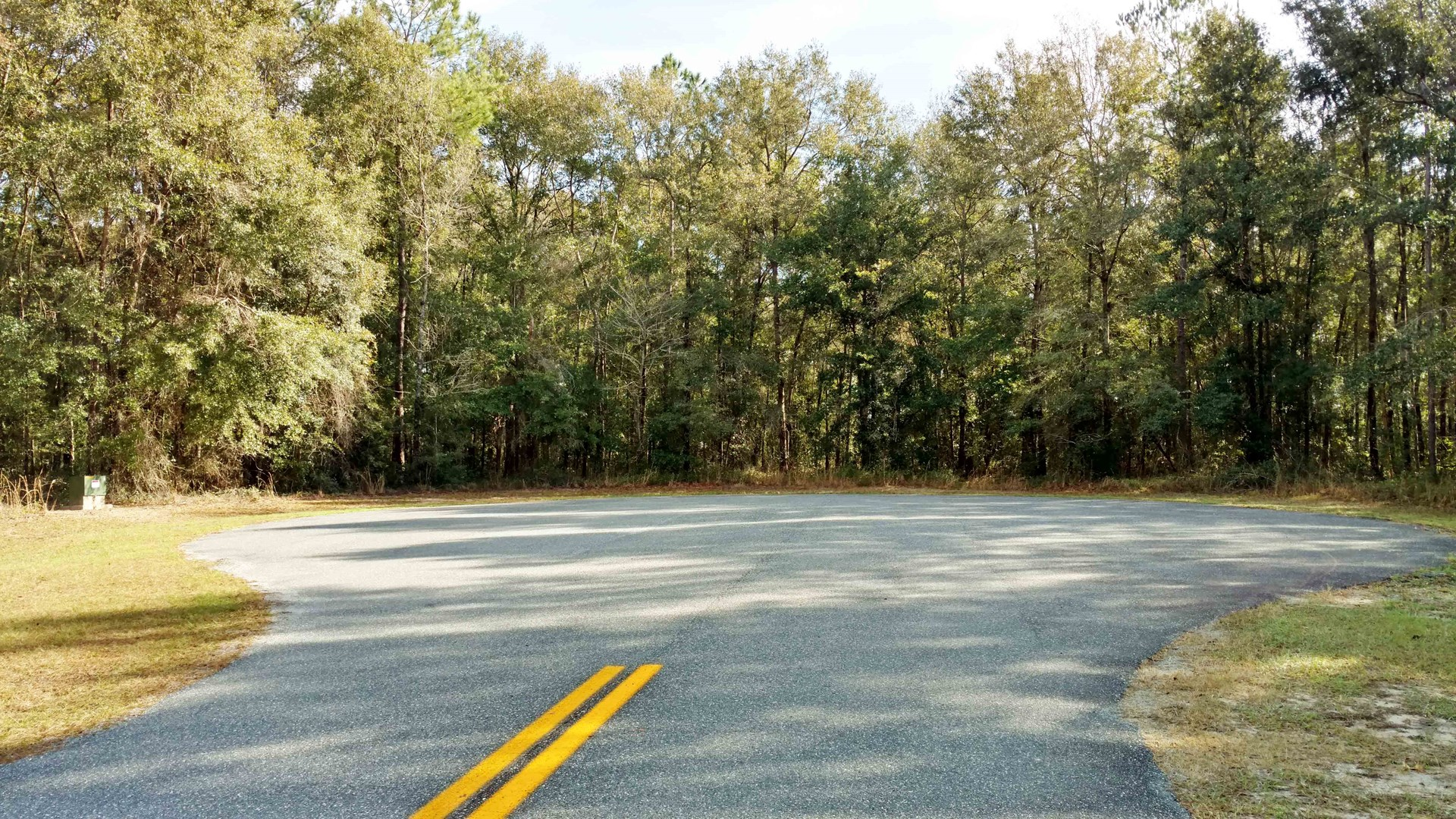 BEAUTIFUL 5 ACRE LOT FOR SALE IN LAKE CITY, FLORIDA
