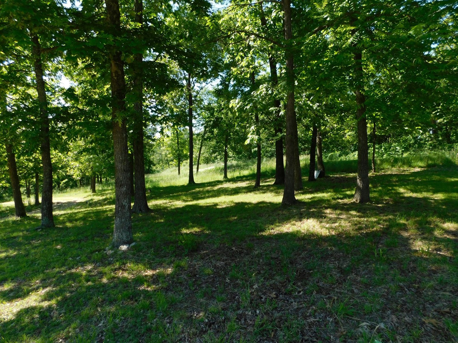 Cabin and Land for Sale in Southern Missouri - Private