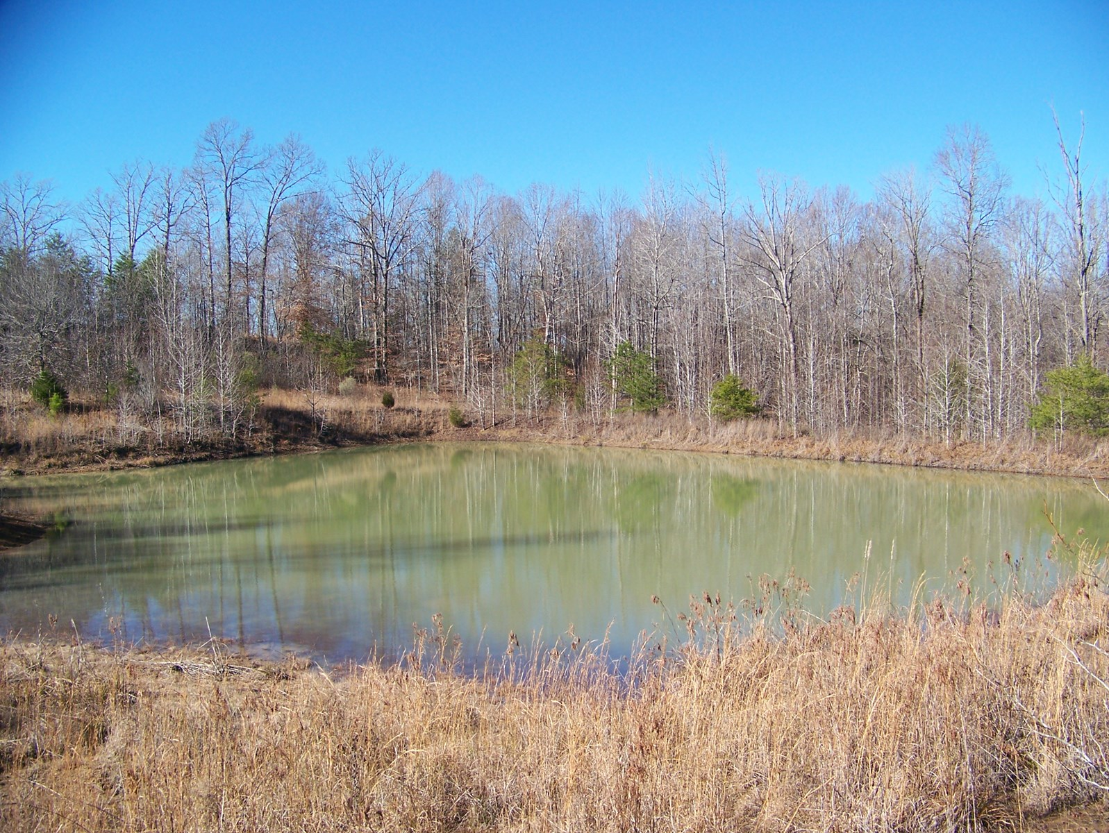 LAND FOR SALE NEAR TN RIVER WITH EXISTING BASEMENT & POND