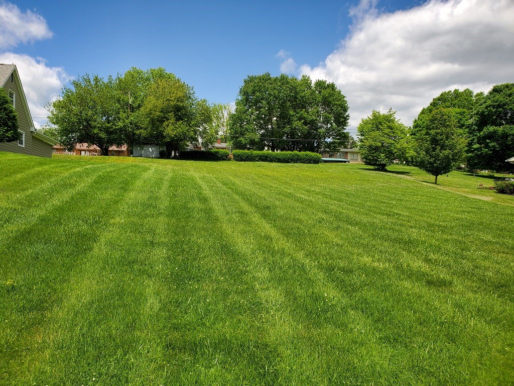 Home Site For Sale In Established Glenrochie Subdivision