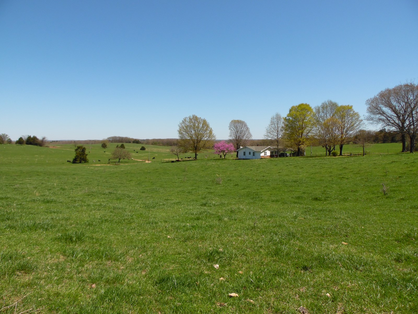 Farm for Sale in Southern MO