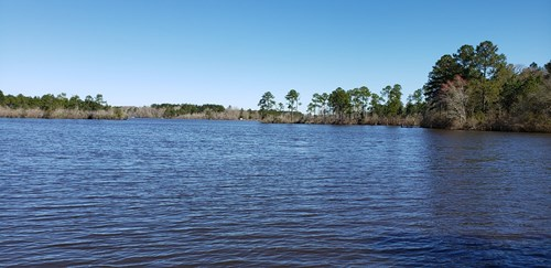 5.7 Acre Waterfront Homesite For Sale in Bulloch County