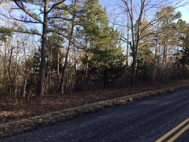 Vacant Land for Sale in Texas County, Missouri