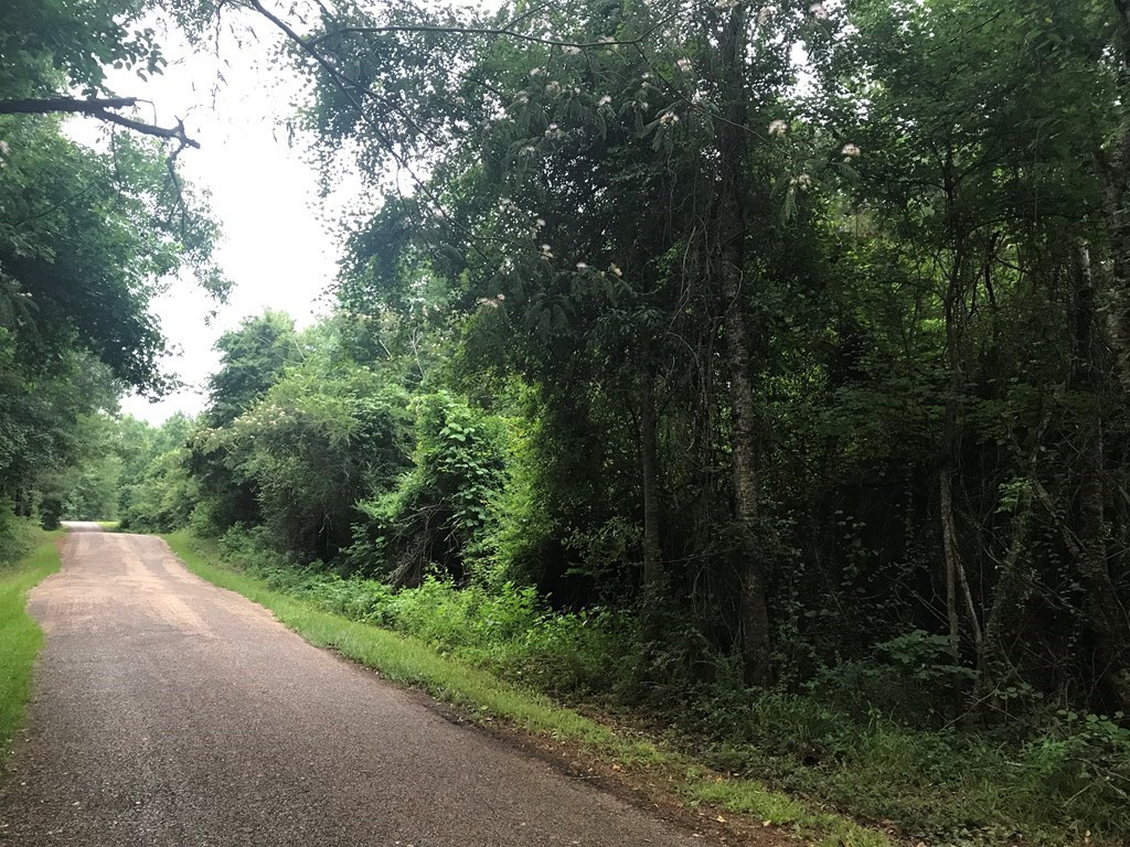 20 Acres Home Site For Sale Lincoln County Brookhaven MS