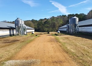 RARE 3 HOUSE SPIKE POULTRY FARM FOR SALE CARTHAGE, MS