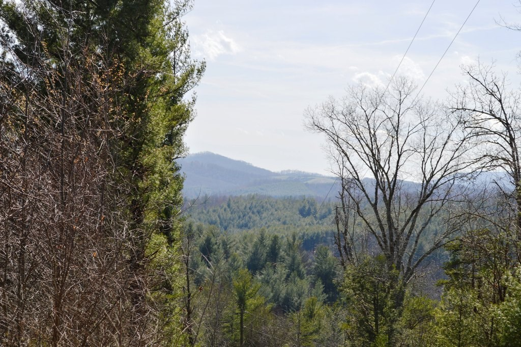 1.33 Acres +/- Building Lot in Piney Creek Alleghany Co NC