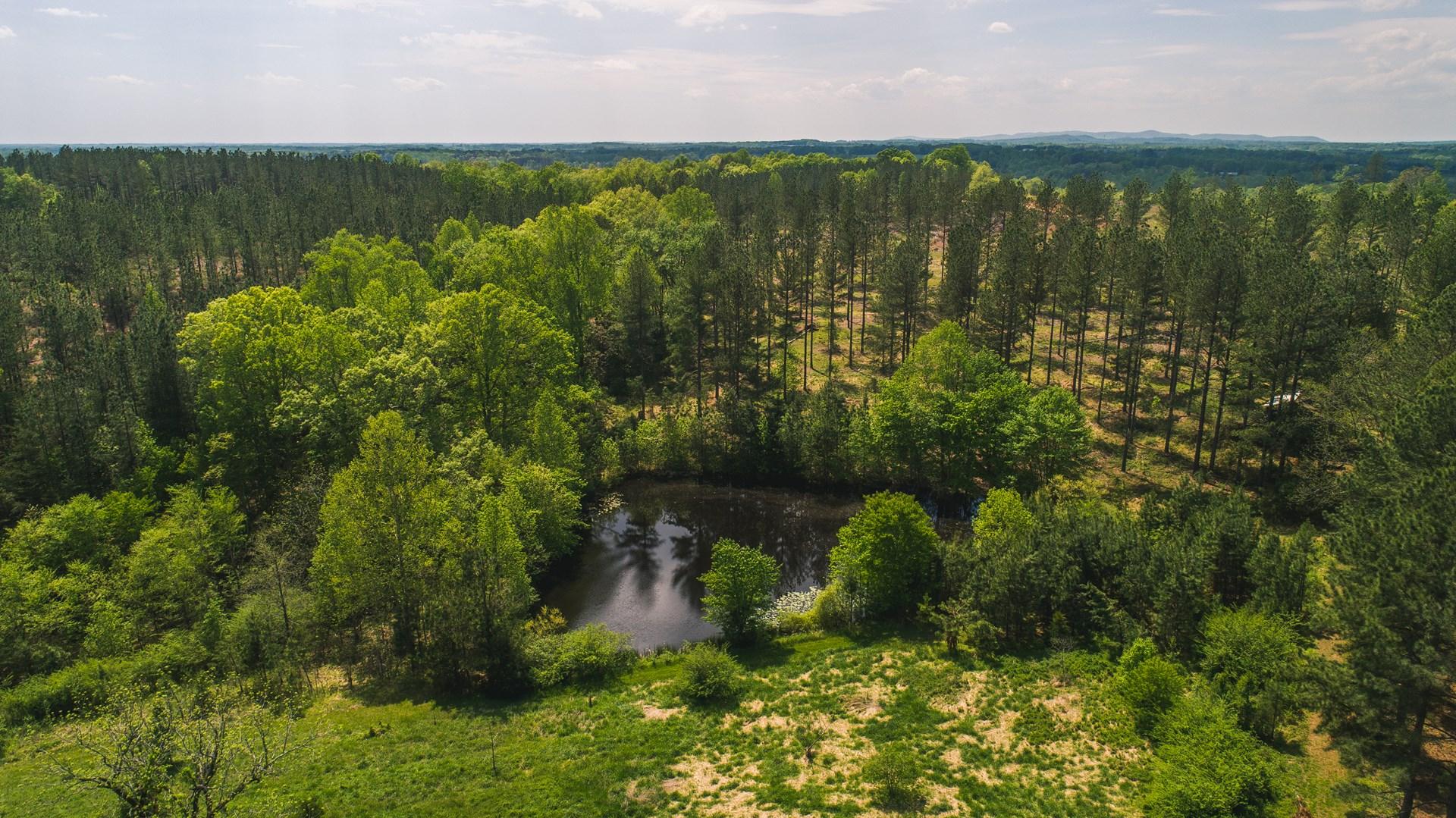 154 Acres In Chatham, VA: Pittsylvania County, VA