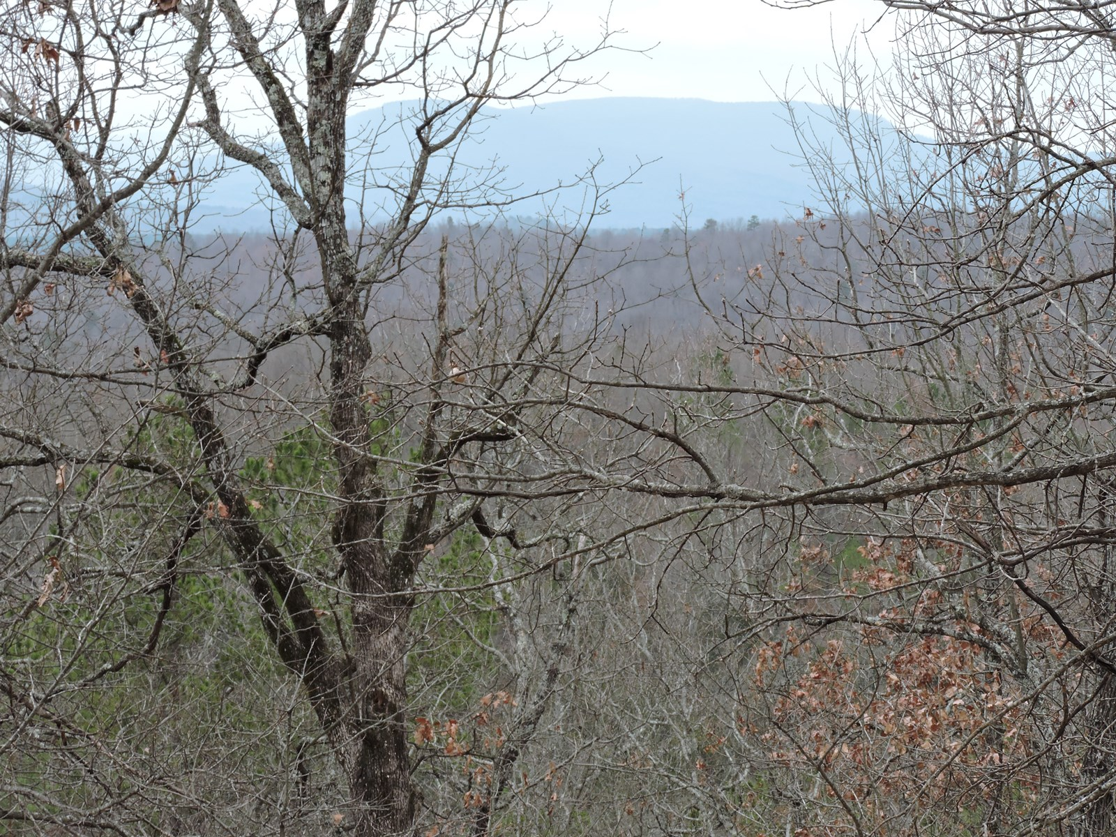 Land overlooking the Buffalo River National Park near Woolum