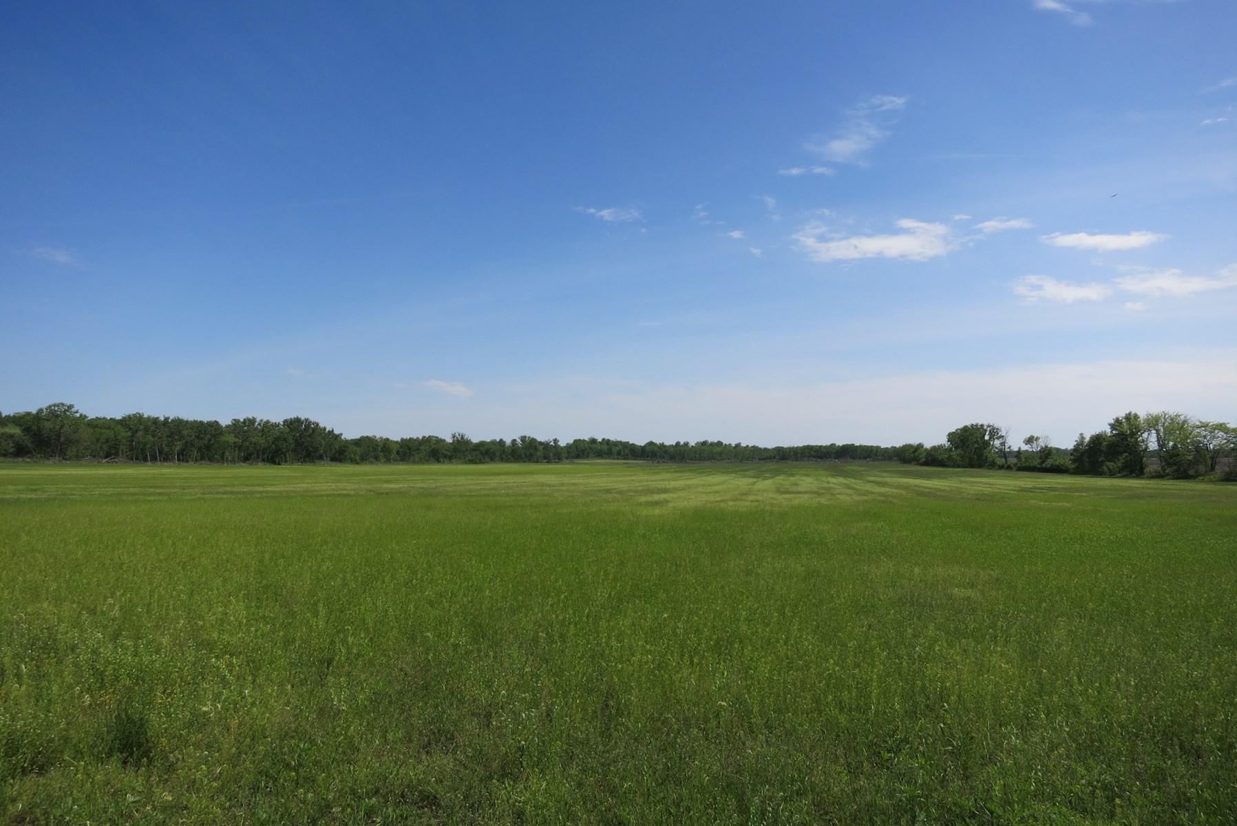 Row Crop Farm For Sale in Northwest Missouri